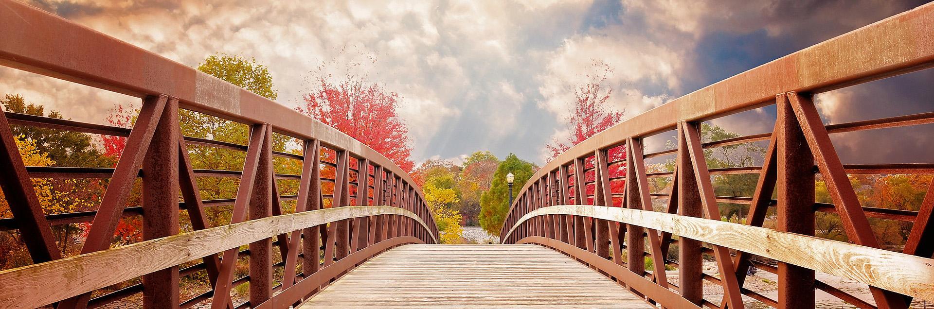 Bridge Skills to Daily Life