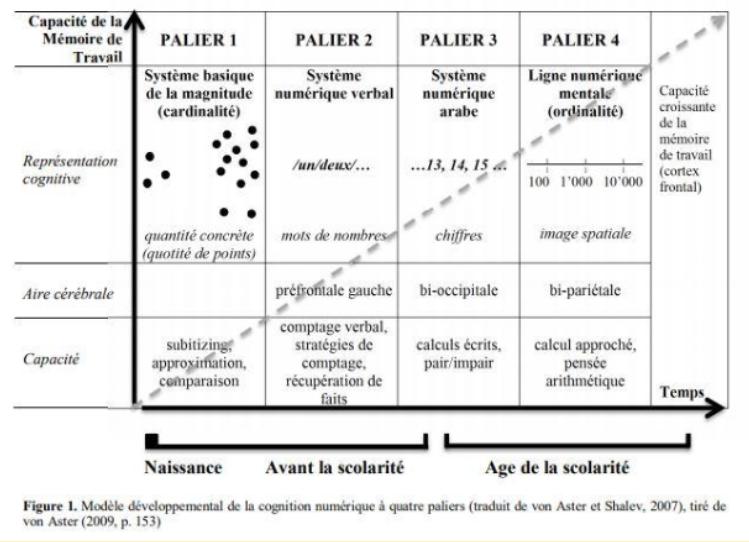 Examath 8 15 test dyscalculie et bilan orthophonique mathématique pour les 8-15 ans, évaluation de la cognition mathématique : utilisation du modèle développemental de Von Aster et Shalev (2007)